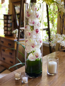 orchids in a cylinder vase