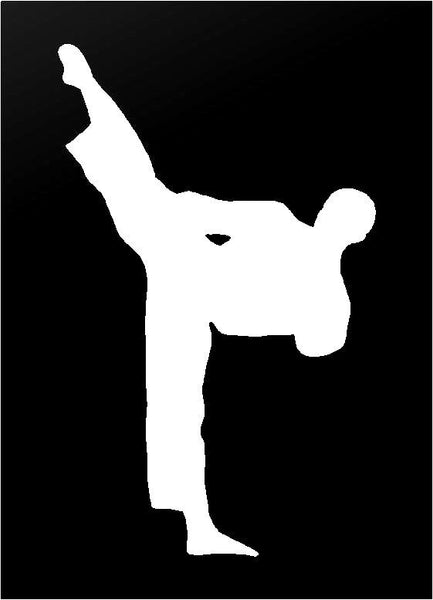Martial Arts Karate Tae Kwon Do Vinyl Decal Car Window Laptop Sticker