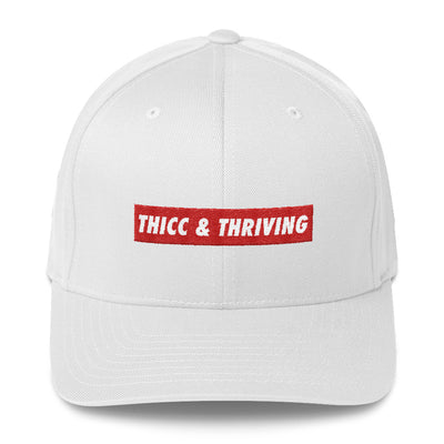 Structured Twill Cap - THICC & THRIVING