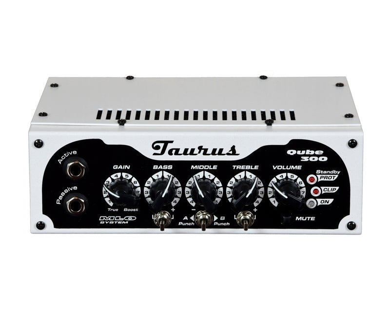 products/Bass_Amplifier_QUBE_300_Taurus_Amplification_1.jpg