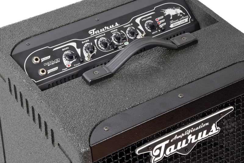 products/Bass_Combo_TS-12_HC_Taurus_Amp_6.jpg