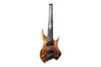 Jordan Rudess Guitar - The Wizard