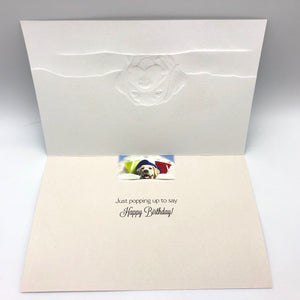 Greeting Card - Birthday - Scoop