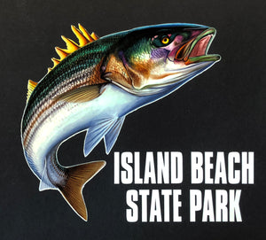 Island Beach State Park Striper Decal
