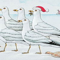 Christmas Card - Marching Gulls (Box of 16)