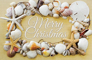 Christmas Card - Seashell Christmas (Box of 16)