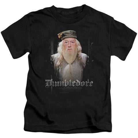 Harry Potter Dumble Doors Juvenile 18/1 Cotton SS T