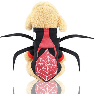 Open image in slideshow, Pet Dog Cat Costumes Spider Skull Pumpkin For Halloween