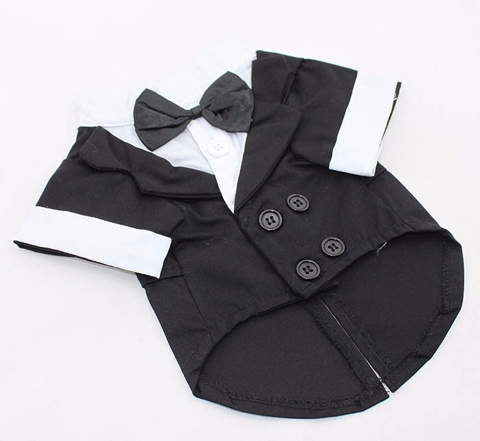 clothes Suit with bow tie Gentleman garment
