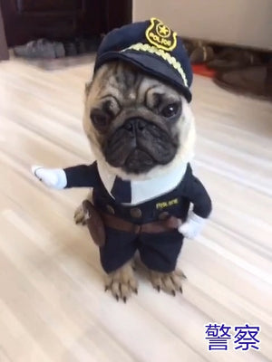 Open image in slideshow, Cosplay Dog Clothes For Small Dogs