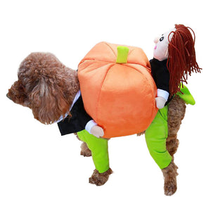 Open image in slideshow, Funny Pet Costume Pumpkin