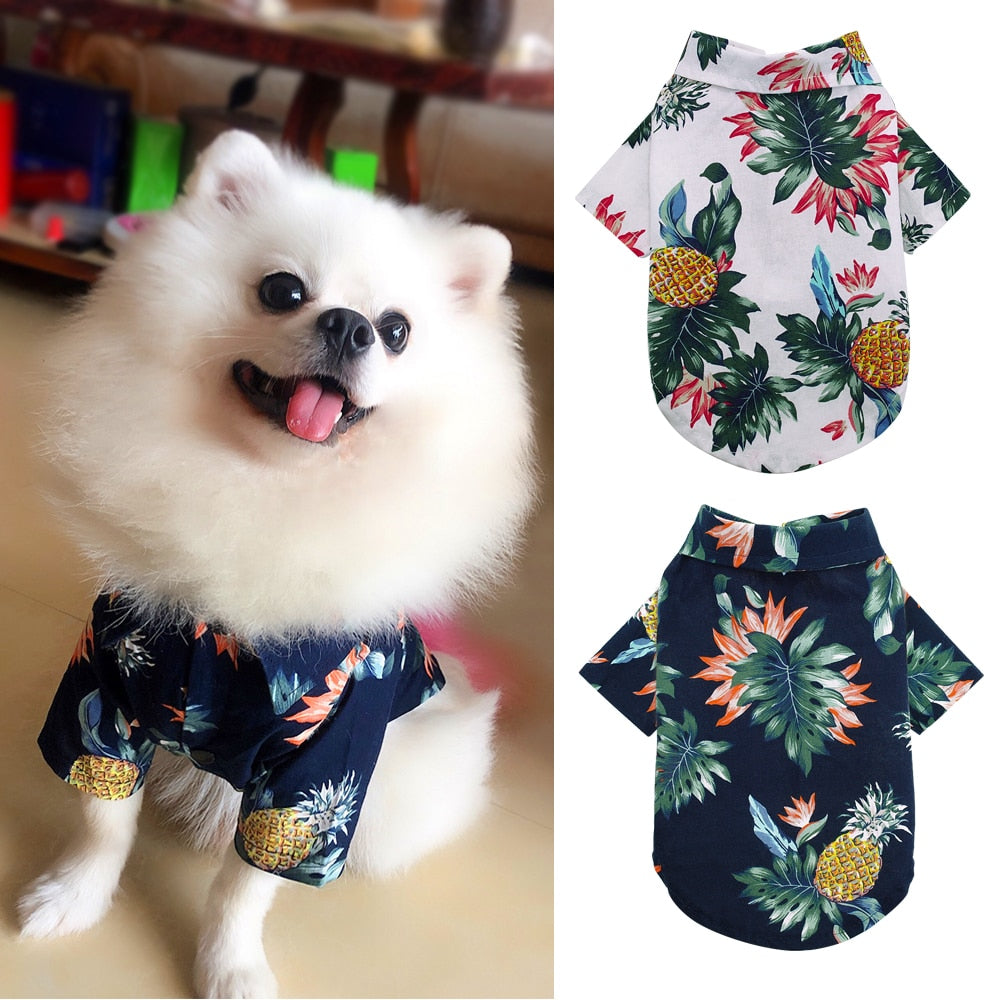 Summer Clothes for Dog