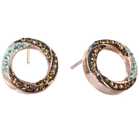 Image of Stainless Steel Circle Earrings with Swarovski Crystal
