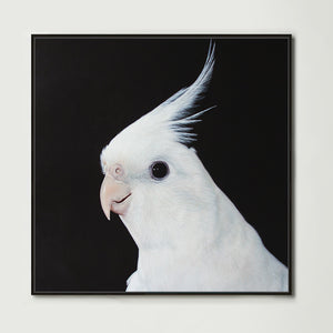 White Cockatiel (Square) Canvas Print