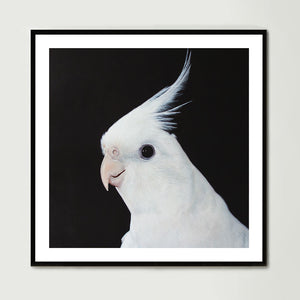 White Cockatiel (Square) Art Print