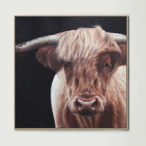 Highland Cow (Square) Canvas Print