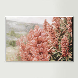 Pink Scoparia Canvas Print