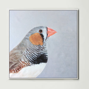 Finch (Square) Canvas Print