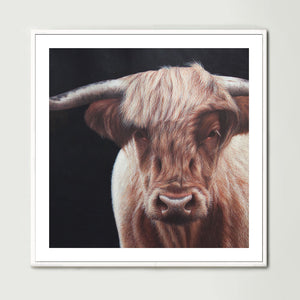 Highland Cow (Square) Art Print