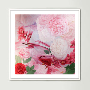 Pink and White Roses (Square) Art Print