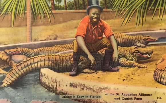 Black Americana - Alligator Postcard - Daring Black Man Sitting on an Alligator!