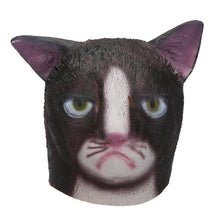 Load image into Gallery viewer, Pissed Off Cat Animal Head Mask