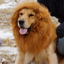 Load image into Gallery viewer, Lion Mane Pet Halloween Costume for Dogs