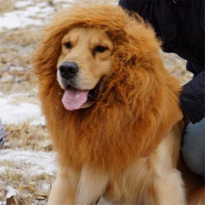 Lion Mane Pet Halloween Costume for Dogs