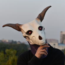 Load image into Gallery viewer, Anime Manga Ancient Magus' Bride Elias Ainsworth Mage Mask