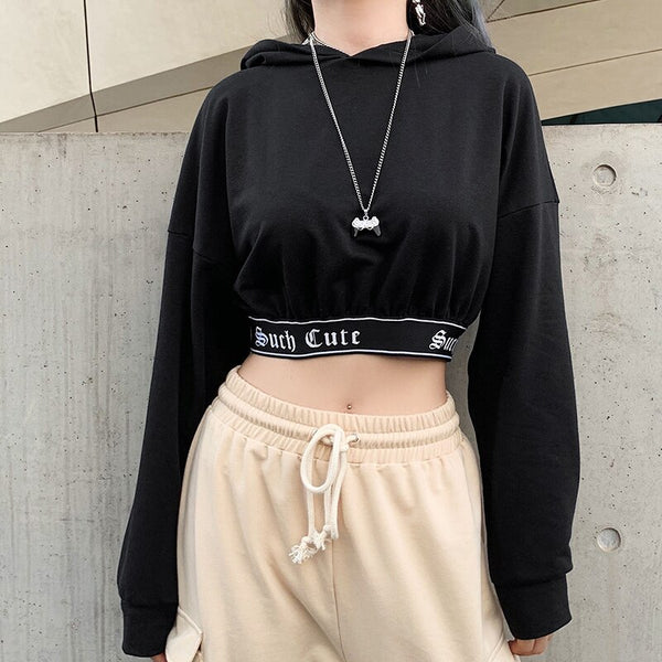 Darlingaga Casual Kpop Autumn Winter Hoodies Women Letter Printed Patchwork Pullover Harajuku Crop Top Hoodie 2019 Sweatshirts