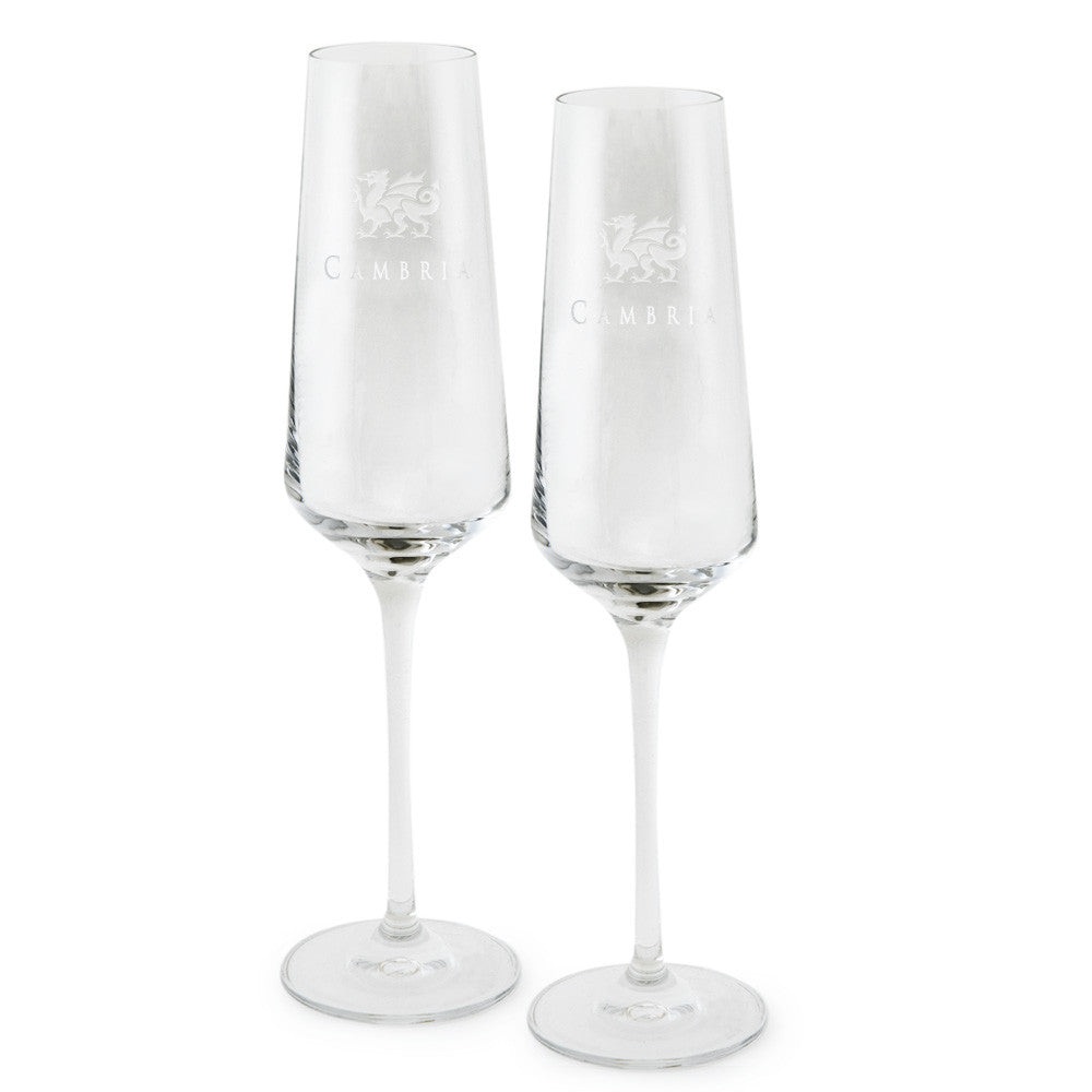 Cambria® 6.5 oz Champagne Flute (Set of 2)
