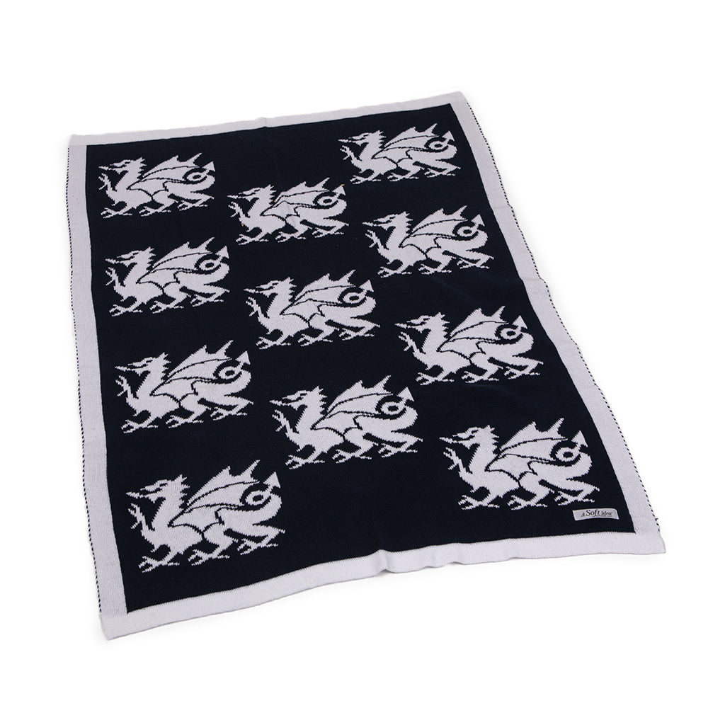Dragon Baby Blanket