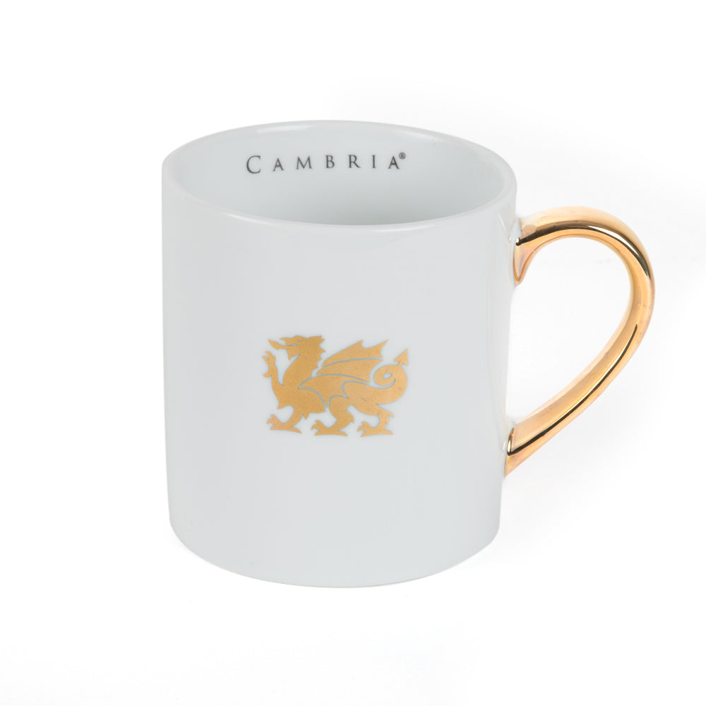 14oz Cambria® Ceramic Mug