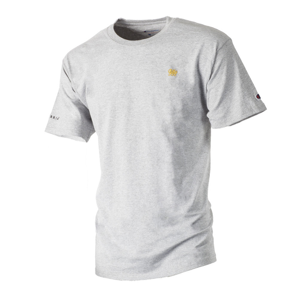 Champion Men's Tagless Tee