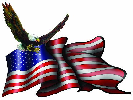 American Flag Eagle Wall Decor - Decal - 6