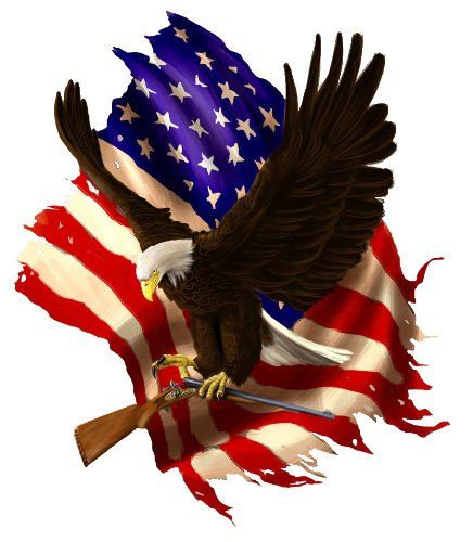 Baring Arms American Flag Eagle Decal - 5