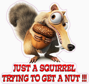 Just a Squirrel Trying to Get a Nut Decal - | Nostalgia Decals Online retro car decals, old school vinyl stickers for cars, racing graphics for cars, car decals for girls