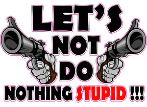 Let's Not Do Nothing Stupid Decal