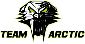 "Team Arctic Cat Decal Version 3 - 6"" x 3"" 