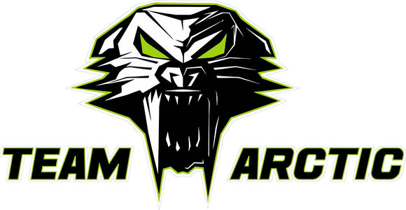 Team Arctic Cat Decal Version 3 - 6