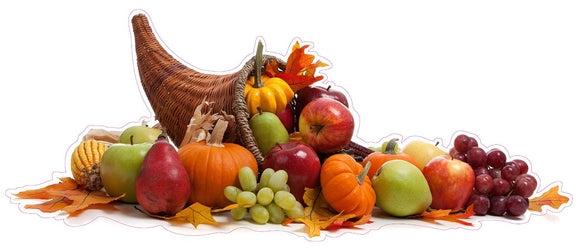 Thanksgiving Cornucopia Wall or Window Decor Decal - 24