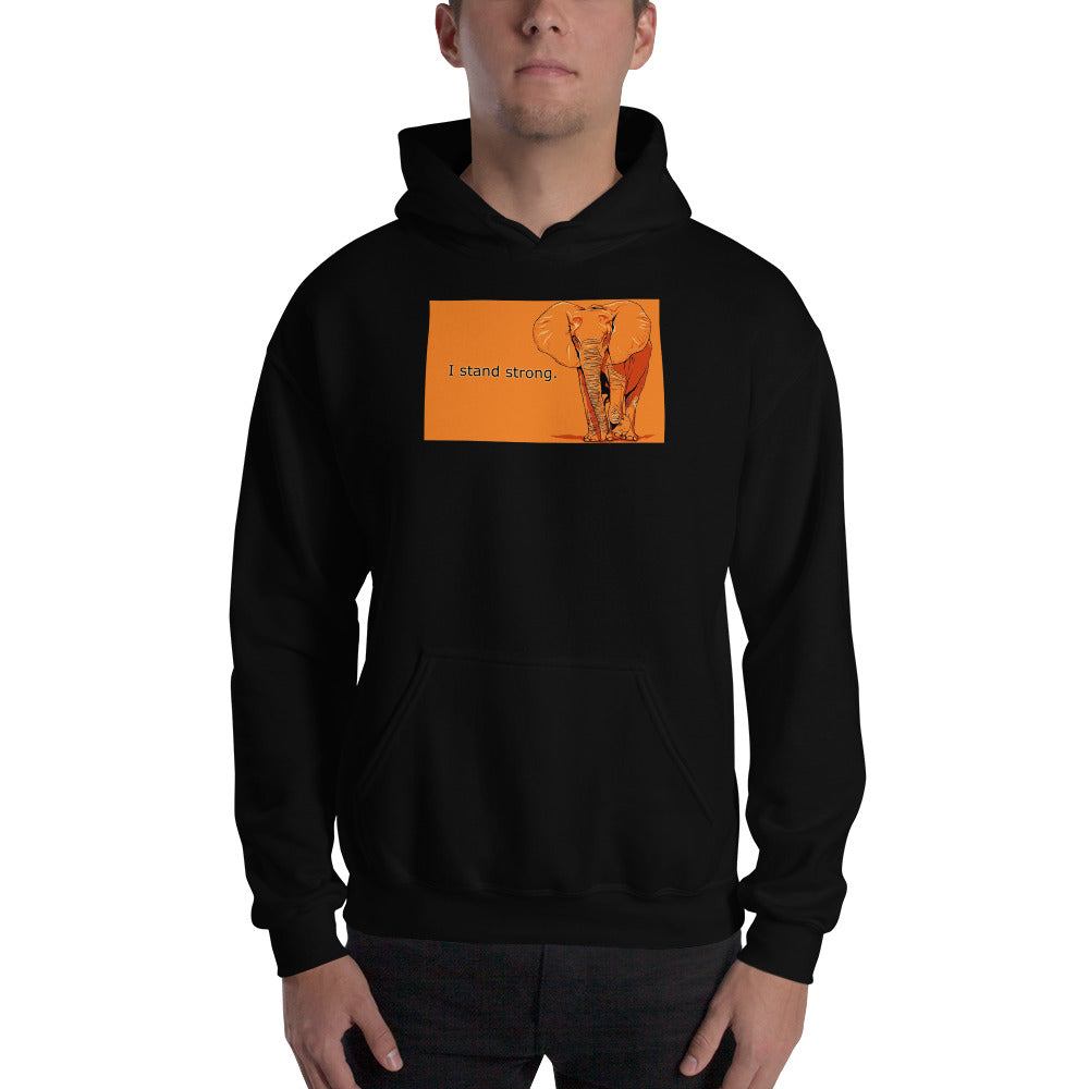 Graphic Edition Hooded Sweatshirt