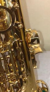 Darron McKinney Demon Chaser 30 Series Gold Plated Professional Alto Saxophone