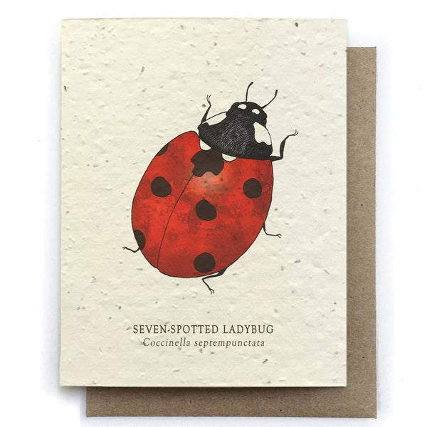 Ladybug Insect Greeting Cards - Plantable Seed Paper