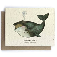 Whale Ocean Greeting Cards - Plantable Seed Paper