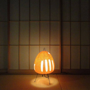 Akari Light Sculptures - 1AY