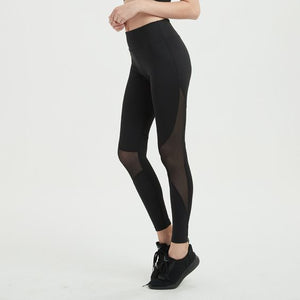 Mesh Panel Gym Sports Leggings