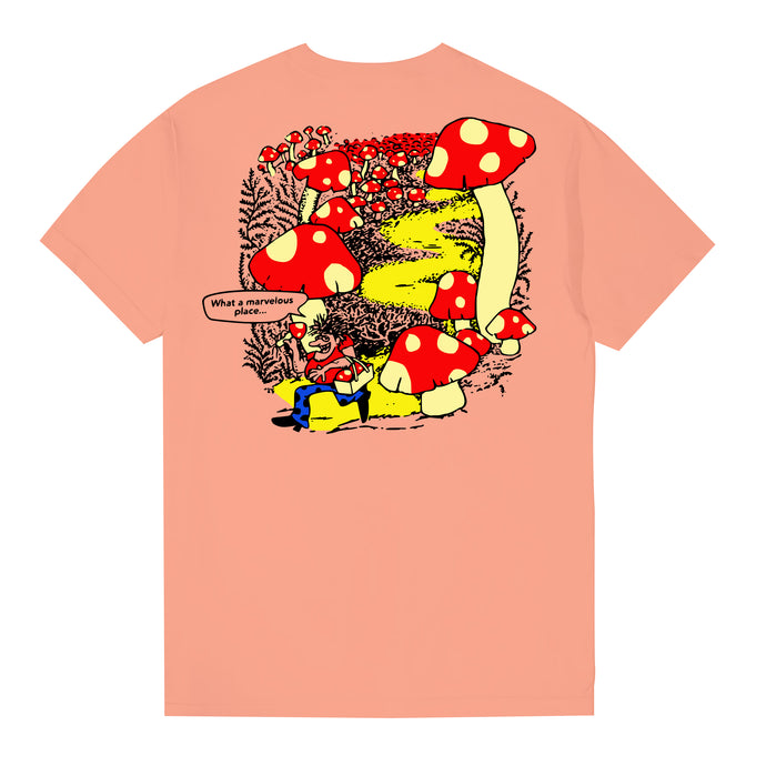 Marvelous Tee (Terracotta)