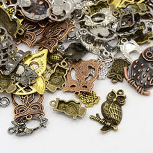Load image into Gallery viewer, 30g x Tibetan Silver Mixed Beads Charms Pendants - Mixed Colour OWLS