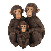 Load image into Gallery viewer, Just The Tree Of Us Monkey Family Ornament